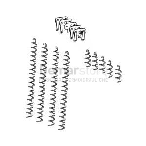 Meccanismo Raschiatubi Completo Thermorossi per H2O 34/COMPACT 32